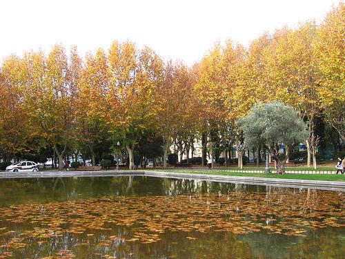 Madrid en otoño. |Fotografía: Pablo Acuña