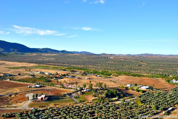 Valle de Guadalupe 06