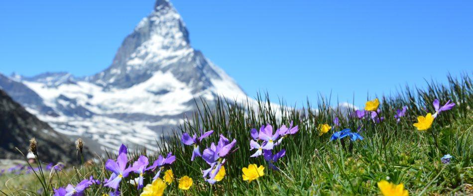 Postales de Suiza