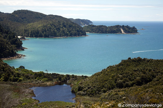 Anchorage Bay en Abel Tasman National Park (Isla Sur)