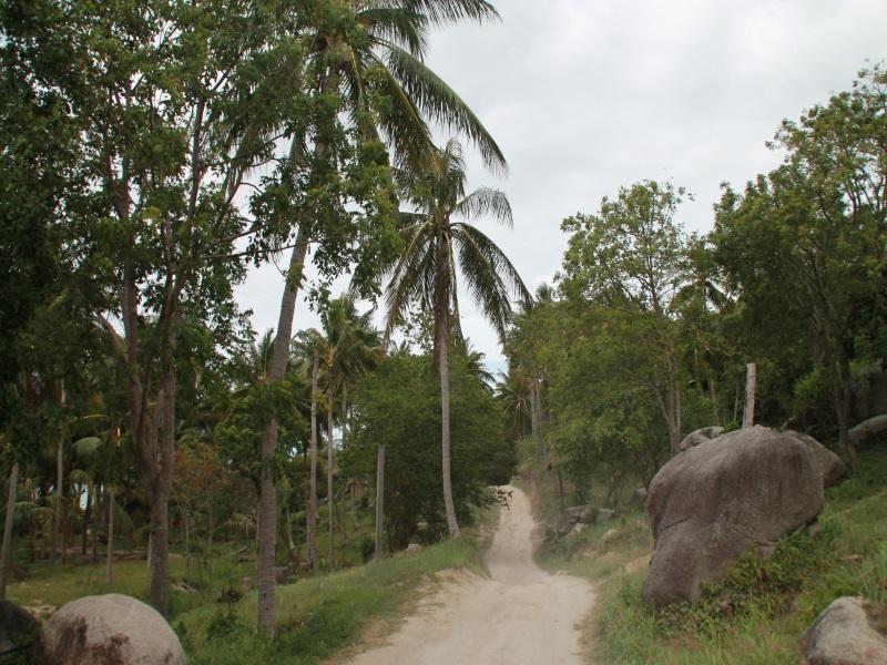 camino de tierra en Koh Tao