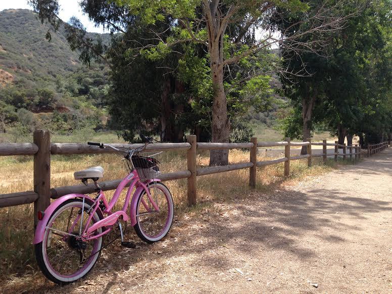 Isla Catalina se recorre en dos tipo de vehículos: carritos de gol y bicicletas. |Fotografía: Nina Pizá